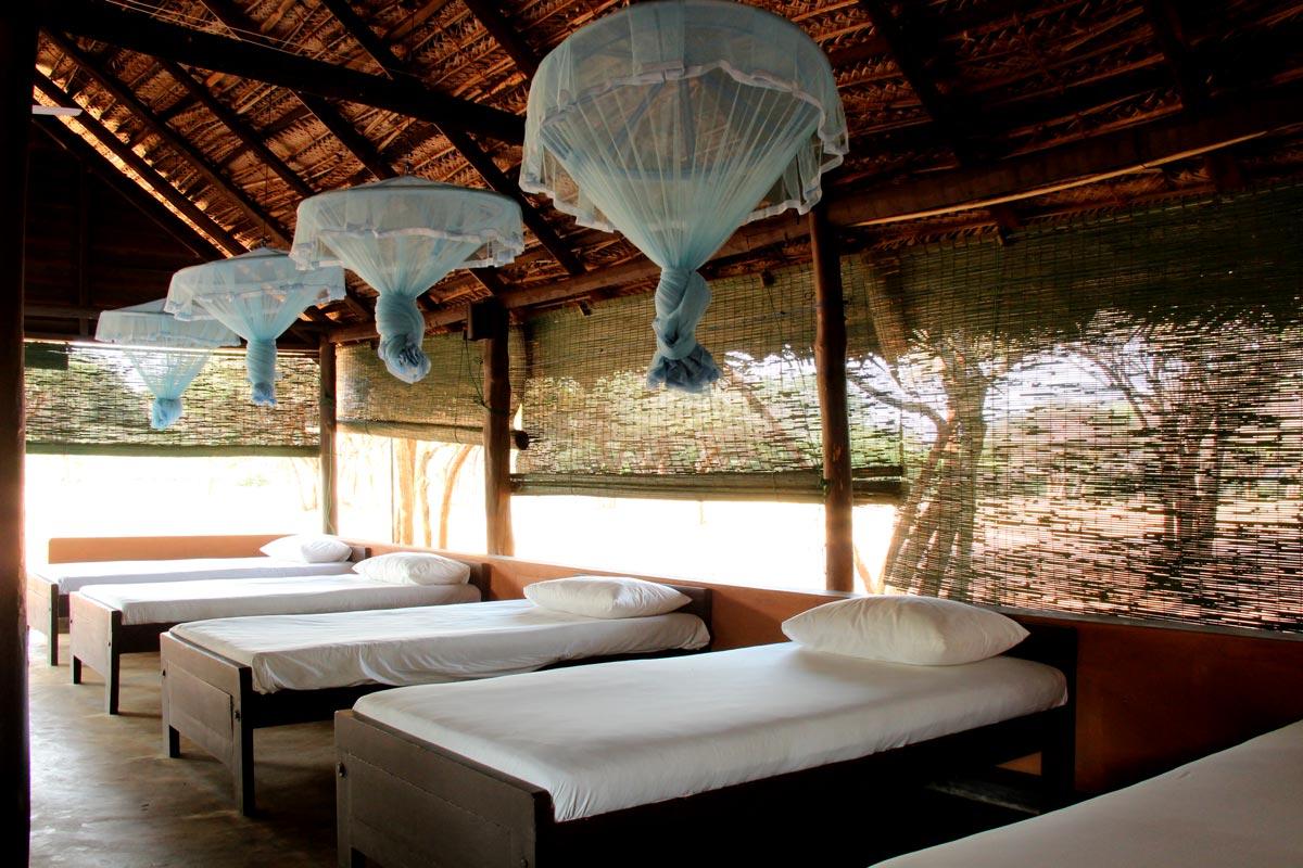 Yala-camping-beds