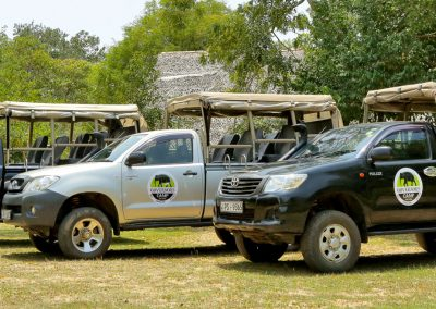 governors-camp-Wilpattu-safari-Jeeps-booking